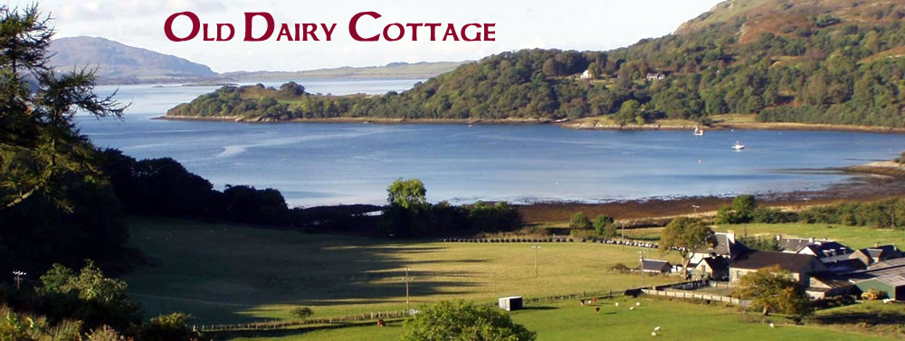 Old Dairy Cottage Self Catering Kilmelford near Oban Scotland