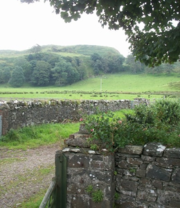 View at back of Old Dairy Cottage - self catering Loch Melfort